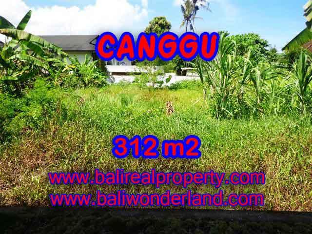 Amazing Land in Bali for sale in Canggu Pererenan Bali – TJCG145