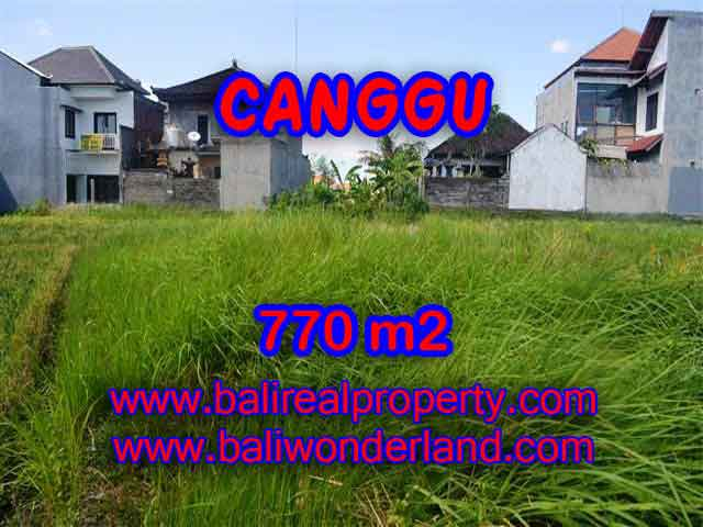 Outstanding Property for sale in Bali, land for sale in Canggu Bali – TJCG148