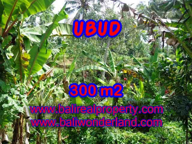 Land for sale in Ubud Bali, Great view in Ubud Center – TJUB415