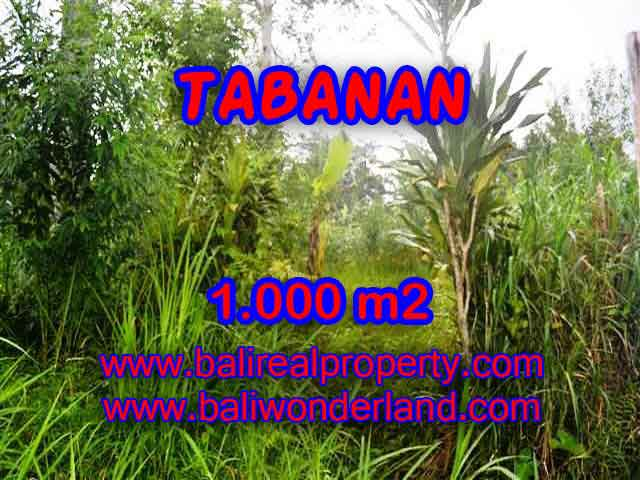 Land in Tabanan for sale, Outstanding view in Tabanan Luwus Bali – TJTB104