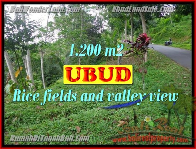 Land in Ubud Bali for sale, Outstanding view in Ubud Tegalalang – TJUB422
