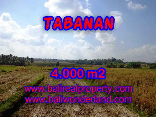 Stunning Property for sale in Bali land sale in Tabanan Bali – TJTB132