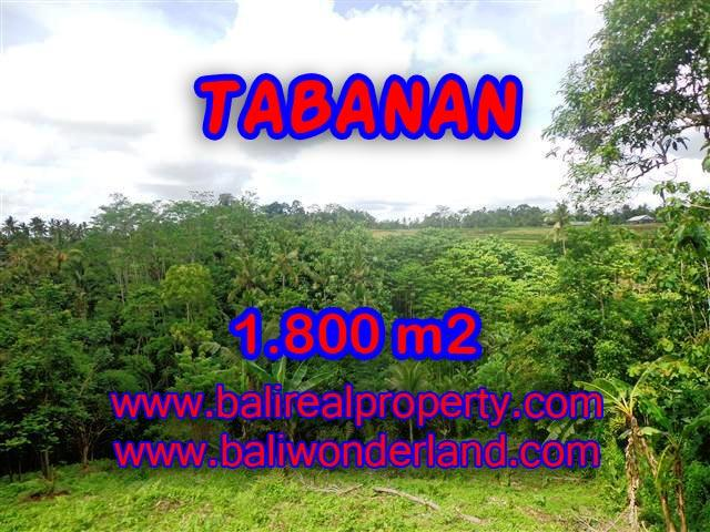Land in Tabanan Bali for sale, Exotic view in Tabanan Penebel – TJTB088