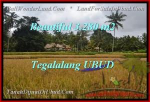 LAND SALE IN Ubud Tegalalang TJUB463