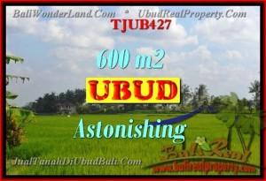 Affordable LAND FOR SALE IN Ubud Tegalalang BALI TJUB427