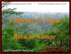 Exotic PROPERTY UBUD BALI 1,300 m2 LAND FOR SALE TJUB481