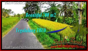 700 m2 LAND SALE IN UBUD TJUB497