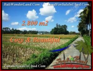2,800 m2 LAND SALE IN UBUD TJUB498