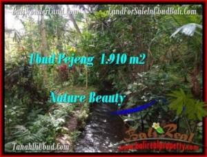 Affordable PROPERTY 1,910 m2 LAND SALE IN UBUD BALI TJUB504