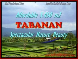 Magnificent 5.450 m2 LAND IN TABANAN BALI FOR SALE TJTB152