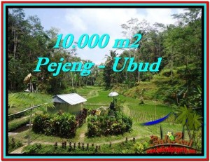 Magnificent UBUD BALI 10,000 m2 LAND FOR SALE TJUB519