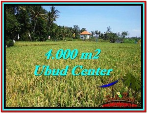 FOR SALE Exotic LAND IN Sentral Ubud BALI TJUB527