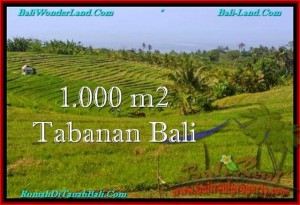Affordable Tabanan Selemadeg BALI LAND FOR SALE TJTB237