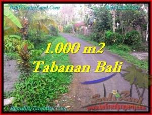 Beautiful TABANAN BALI 1,000 m2 LAND FOR SALE TJTB242