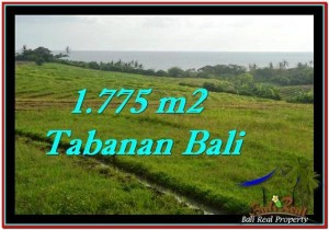 Affordable LAND SALE IN Tabanan Selemadeg BALI TJTB251