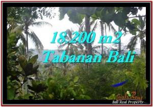 Magnificent TABANAN BALI 18,200 m2 LAND FOR SALE TJTB254