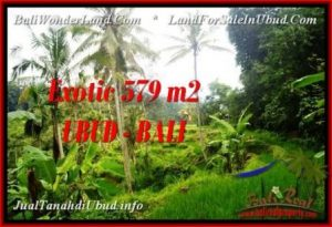 Magnificent UBUD BALI 579 m2 LAND FOR SALE TJUB538