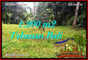 Exotic Tabanan Penebel BALI LAND FOR SALE TJTB278