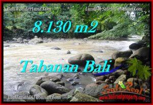 Magnificent TABANAN BALI 8,130 m2 LAND FOR SALE TJTB285