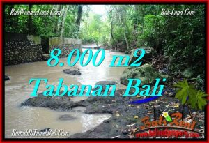 FOR SALE Exotic LAND IN Tabanan Selemadeg BALI TJTB287