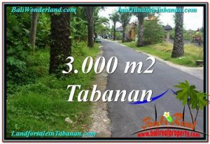 Magnificent PROPERTY 3,000 m2 LAND FOR SALE IN Tabanan Kerambitan TJTB297
