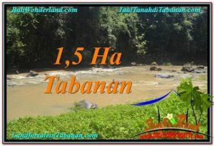 Beautiful TABANAN BALI 15,000 m2 LAND FOR SALE TJTB304