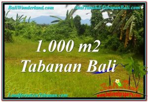Exotic 1,000 m2 LAND IN TABANAN BALI FOR SALE TJTB311