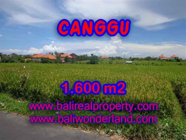 Land in Bali for sale, attractive view in Canggu Cemagi Bali – TJCG139