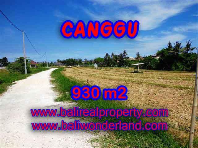 Affordable 930 m2 LAND IN Canggu Pererenan BALI FOR SALE TJCG146