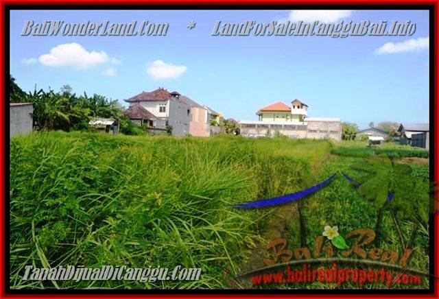 Beautiful CANGGU 770 m2 LAND FOR SALE TJCG148