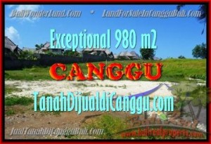 Affordable PROPERTY Canggu Pererenan BALI LAND FOR SALE TJCG152