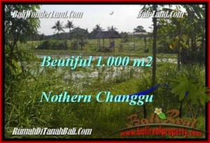 Exotic PROPERTY 1,000 m2 LAND FOR SALE IN CANGGU BALI TJCG180