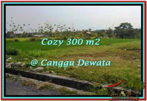 Beautiful PROPERTY CANGGU BALI 300 m2 LAND FOR SALE TJCG185