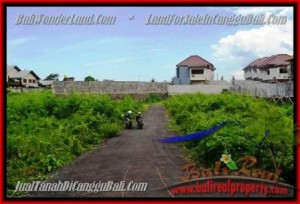 Beautiful PROPERTY CANGGU BALI 335 m2 LAND FOR SALE TJCG142