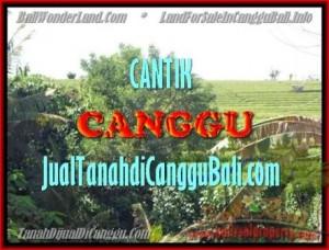 Canggu Pererenan LAND FOR SALE TJCG143