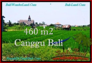 Exotic PROPERTY 460 m2 LAND IN CANGGU BALI FOR SALE TJCG195