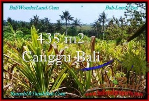 Magnificent PROPERTY CANGGU BALI 435 m2 LAND FOR SALE TJCG196