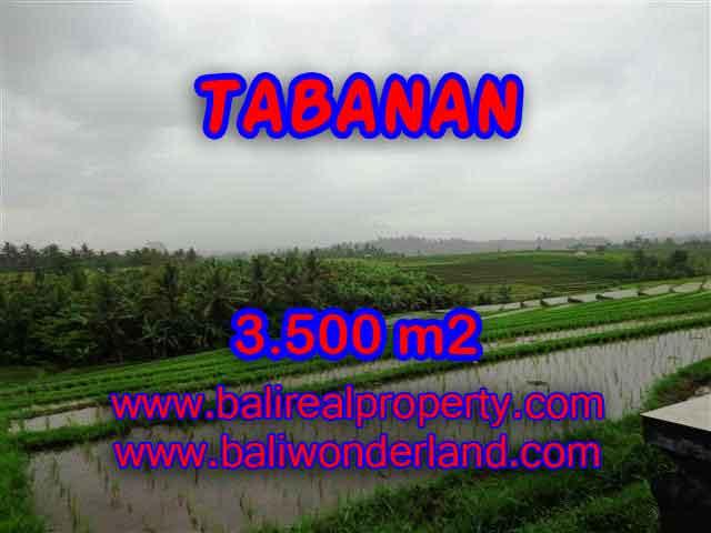 Land in Bali for sale, astounding view in Tabanan Bali – TJTB141