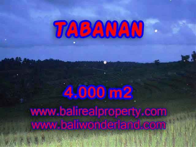 Land in Bali for sale, great view in Tabanan Bali – TJTB096