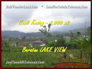 Beautiful PROPERTY 1.000 m2 LAND IN Tabanan Bedugul FOR SALE TJTB180