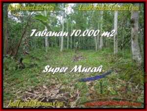 Tabanan Penebel BALI LAND FOR SALE TJTB177