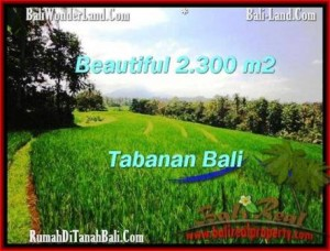 Affordable LAND FOR SALE IN Tabanan Selemadeg BALI TJTB209