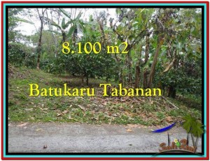 FOR SALE Exotic 8.100 m2 LAND IN TABANAN TJTB212