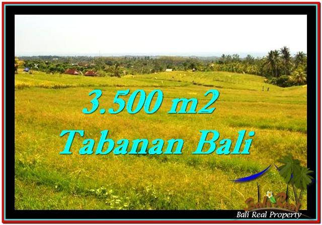 Beautiful 3,500 m2 LAND IN TABANAN BALI FOR SALE TJTB259