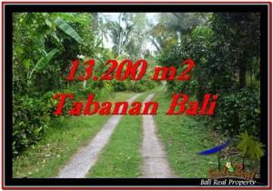 Beautiful 13,200 m2 LAND IN TABANAN BALI FOR SALE TJTB255