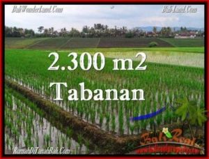 FOR SALE Exotic 2,400 m2 LAND IN TABANAN TJTB263