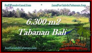 Beautiful TABANAN BALI 6,300 m2 LAND FOR SALE TJTB275
