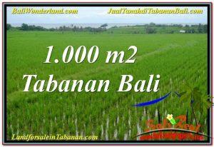 Beautiful PROPERTY TABANAN 1,000 m2 LAND FOR SALE TJTB307