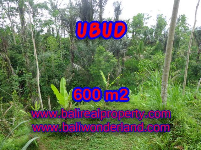 Land in Ubud Bali for sale, nice view in Ubud Tegalalang Bali – TJUB346