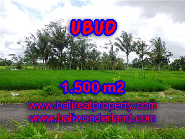 Land for sale in Bali, wonderful view in Ubud Bali – TJUB369